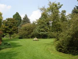 Antwerpen_Arboretum_Kalmthout_2.jpg