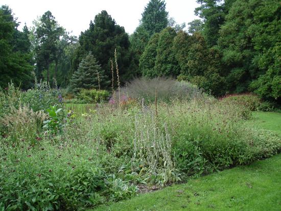 Antwerpen_Arboretum_Kalmthout_5.jpg