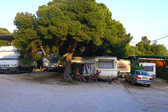 Athene_camping_Bacchus_2.jpg