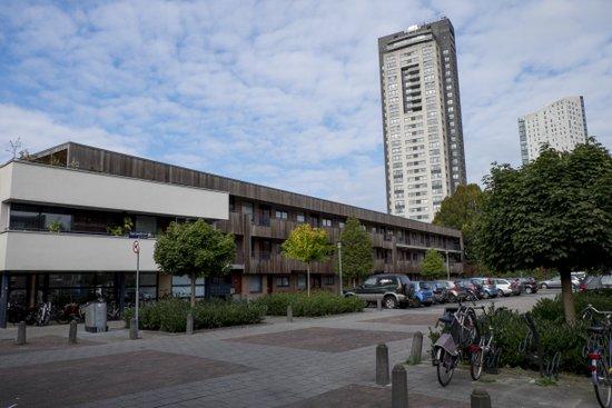 Eindhoven_De_Bergen_02.jpg