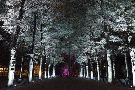 Eindhoven_Glow_59.jpg