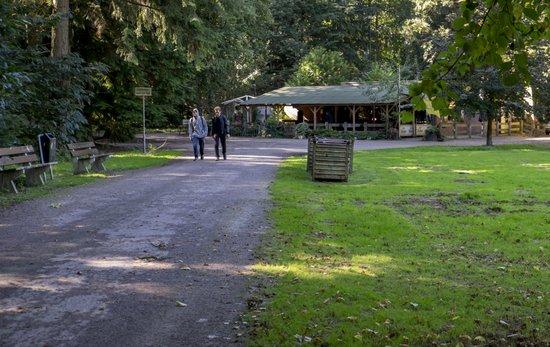 Eindhoven_Philips_De_Jongh_Wandelpark_04.jpg