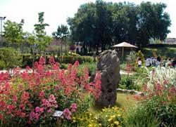 Florence__giardino-dei-semplici-flore.jpg