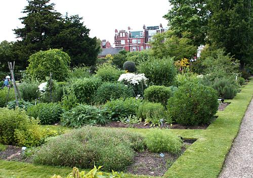 Londen_Chelsea_physic_garden.jpg
