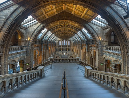 Londen_Natural_History_Museum_Main_Hall,_London,_UK_-_Diliff.jpg