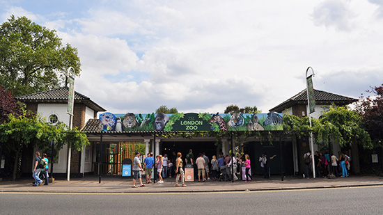 Londen_london_zoo_Main-Entrance_1936.jpg