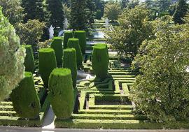 Madrid_parken-Jardines-de-Sabatini-2.jpg
