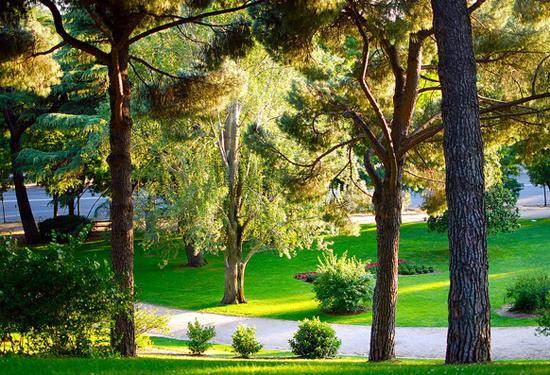 Madrid_parken-Parque-de-l-Oeste.jpg