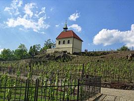 Praag_troja_wijngaard.jpg