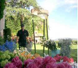 Rome__Sebastian-flowers-rome-2.jpg